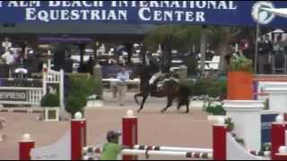 CSIO 4* Challenge Cup Round IX - Wellington Equestrian Realty - Luca Moneta - CONNERY