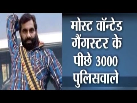 Most Wanted Gangster Anand Pal Singh and 3000 Policemen