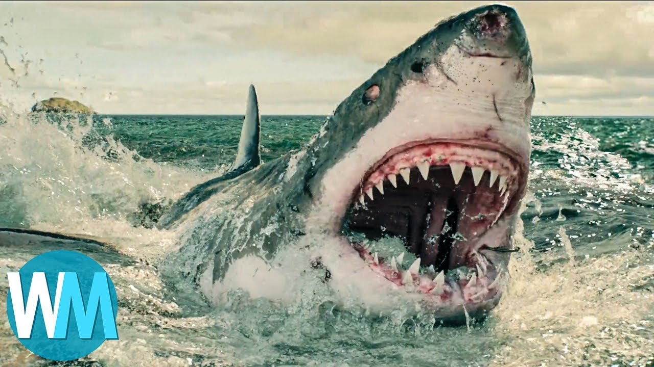Top 10 Most Horrific Shark Attacks That Actually Happened Youtube