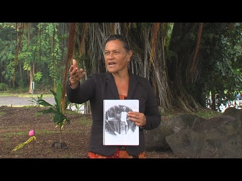 Stones From Lost Hilo Heiau Recovered, Preserved (Sept. 20, 2016)
