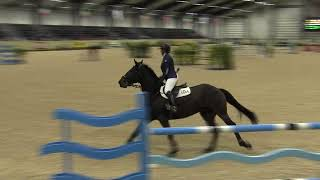 Video of ARDRAGH ROCK STAR ridden by HARRIET L. MCCORD from ShowNet!
