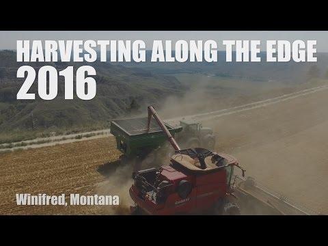 Harvesting Along The Edge 2016 (Winifred, Montana)