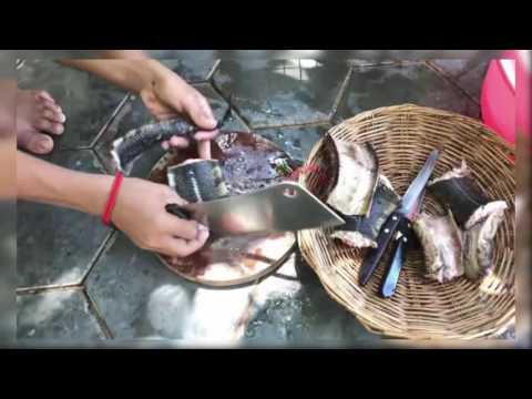 Köy Yemeği- Üç tane çocuk yılan pişirip yiyor.