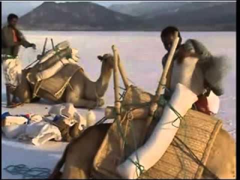 Découvrir le lac Assal