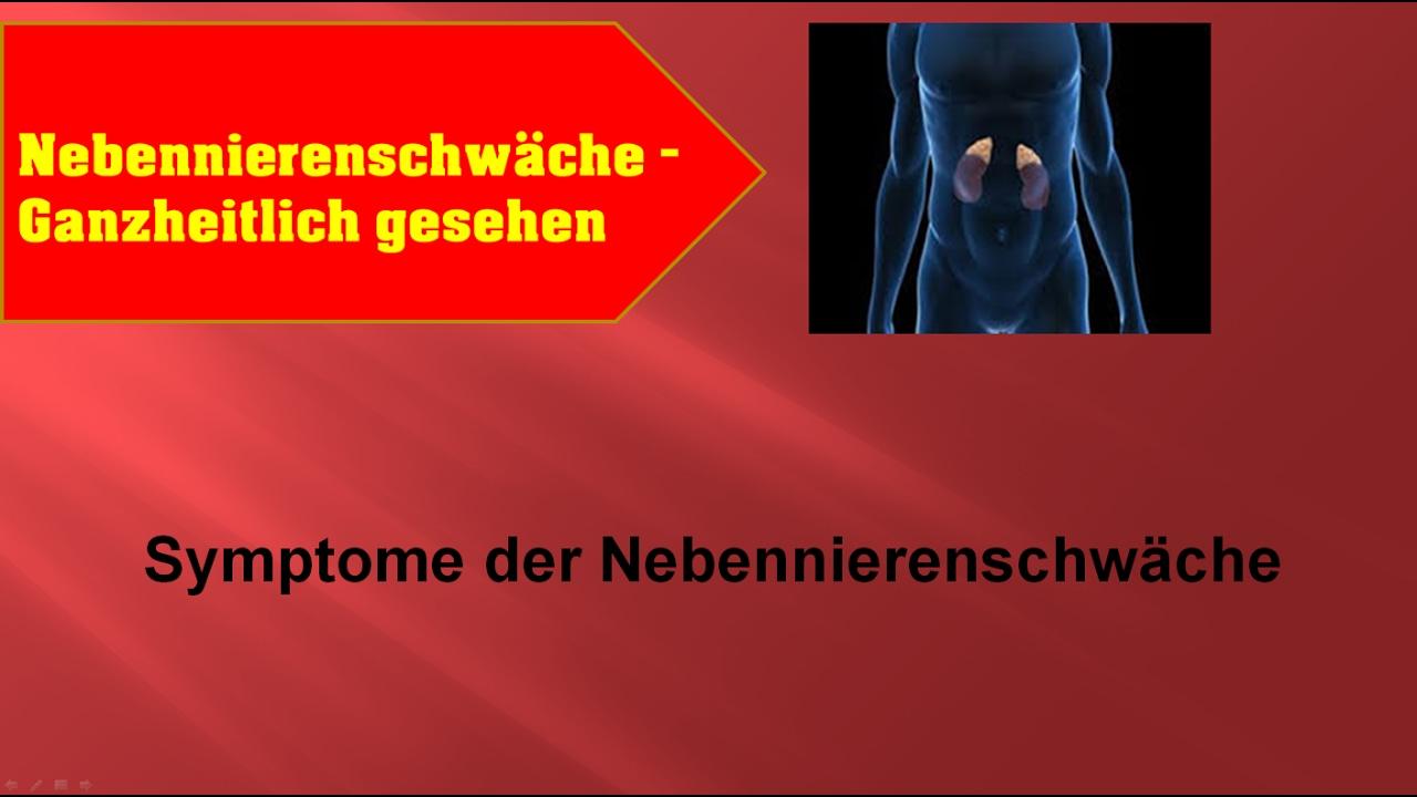symptome der nebennierenschwäche - ganzmedizin naturheilpraxis