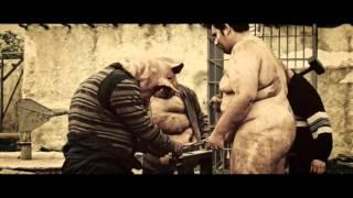 люди свиньи