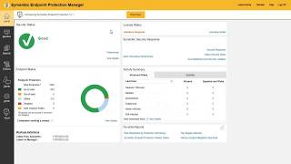 Symantec System Diagnostic Tool and Endpoint Protection Manager Interface Overview