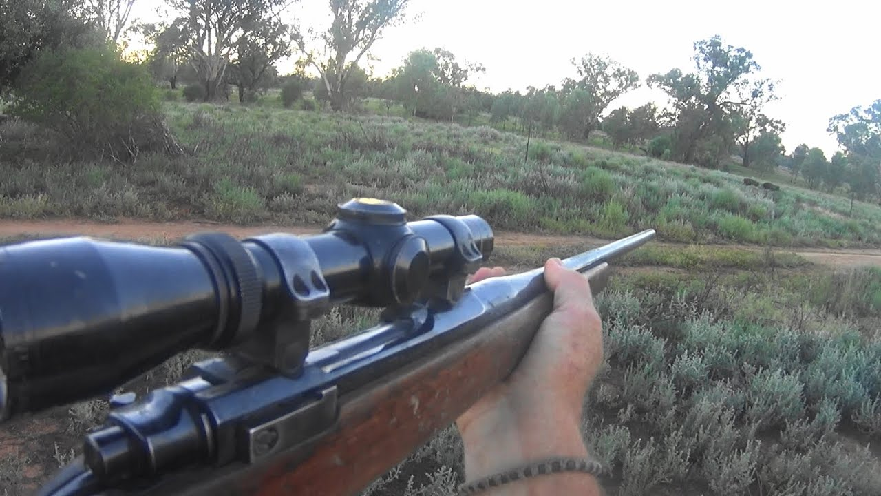 Last clip of our Father & Son  pig/hog hunt.