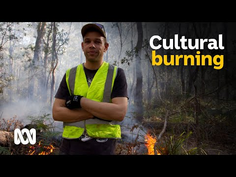 ABC Australia: Indigenous fire methods protect land before and after the Tathra bushfire