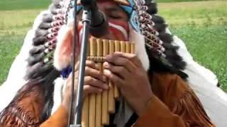 Gambar cover WUAUQUIKUNA - Buffalo white
