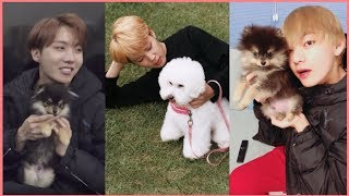 BTS Cute Animals Compilation