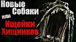 ИЩЕЙКИ ХИЩНИКОВ (Новые собаки Хищников) ХИЩНИК 2018