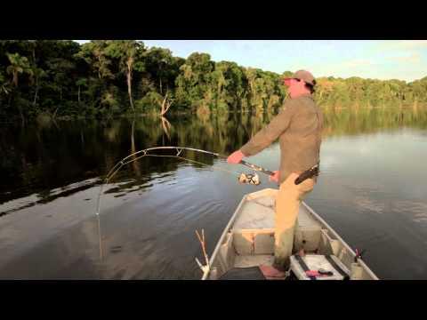 PIRAIBA FISHING - SURINAME - ANDREE'S EXPEDITIONS