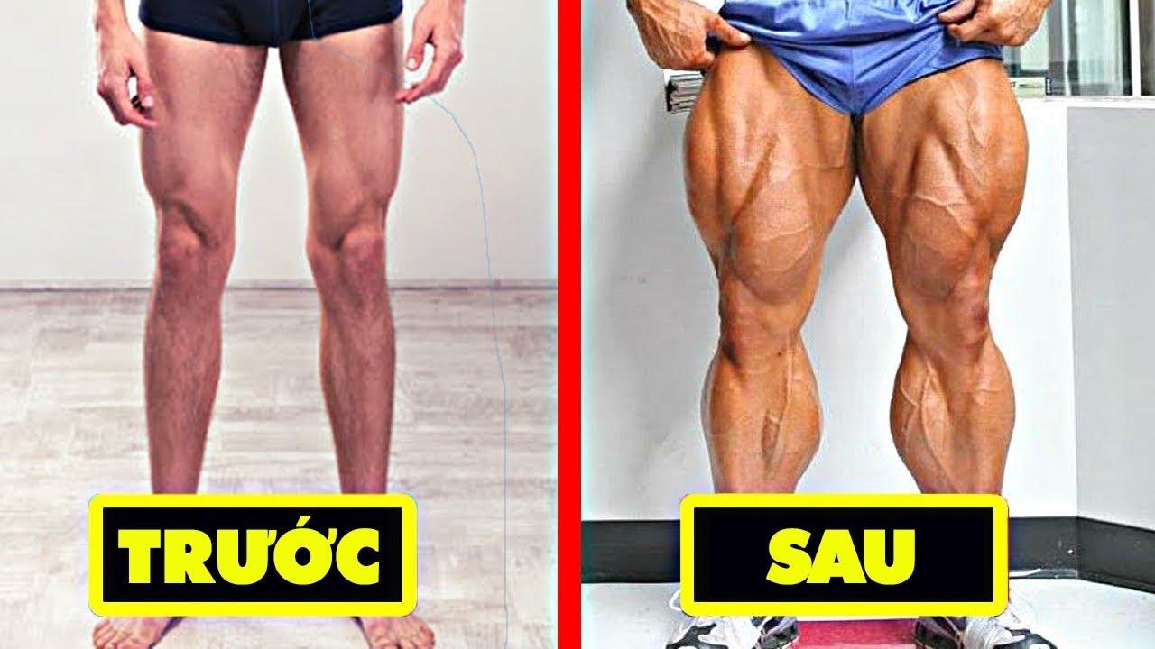 20 phương pháp tăng cơ bắp chân hiệu quả   tăng cơ giảm mỡ
