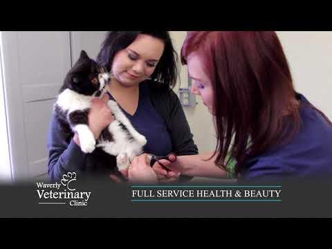 Waverly Veterinary Clinic - Health & Beauty Commercial