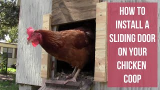 How To Install A Sliding Door On Your Chicken Coop - Chicken Tractor Upgrades - Part Three