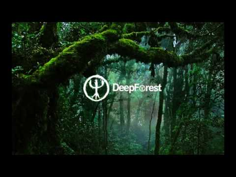 Deep Forest - Sweet Lullaby (live)