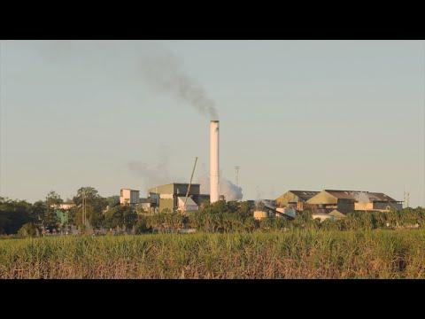 Farleigh Mill Tour - How Sugar Is Made