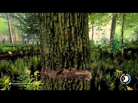 The Forest Free Download - Game Torrent [Updated]