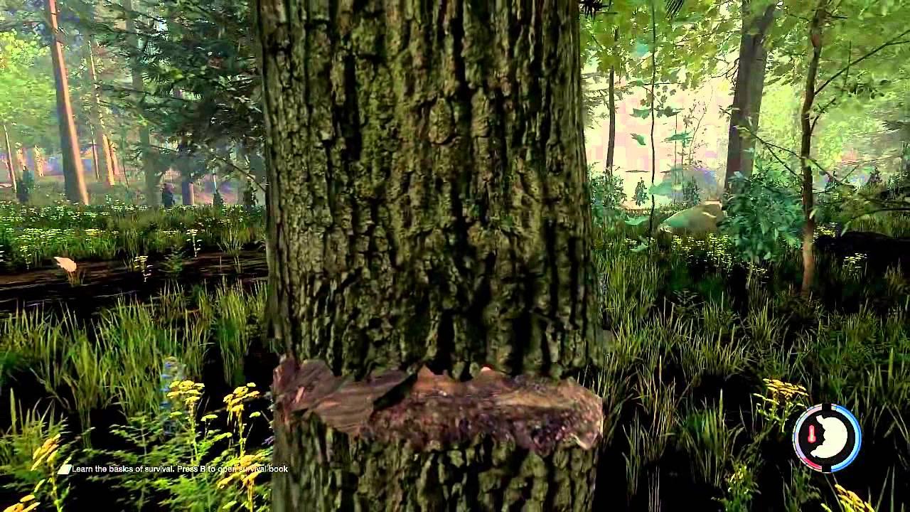 The forest v1. 06b скачать торрент русская версия.
