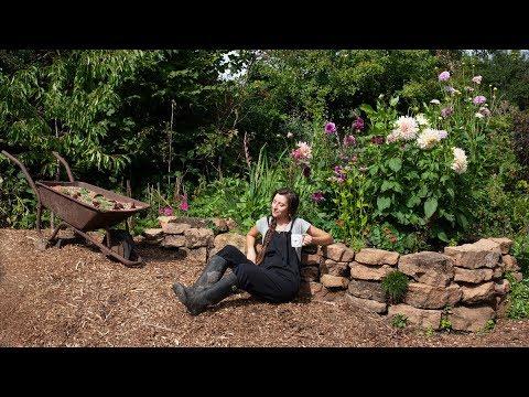 august-allotment-garden-tour-life-changing-announcement