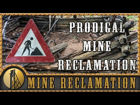 Prodigal Gold Mine - Reclamation - Gold Rush Expeditions - 2015