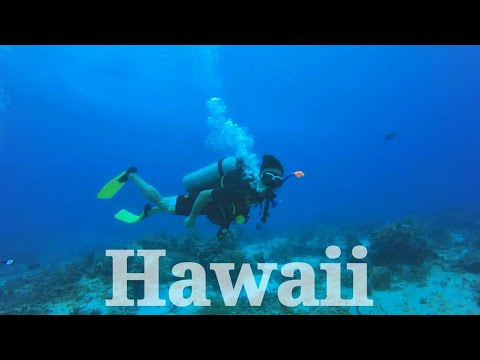 2017 Cancun+Hawaii Trip (Sky Diving, Surfing, Cliff Jumping, Mountain Climbing, Dolphin, Diving)