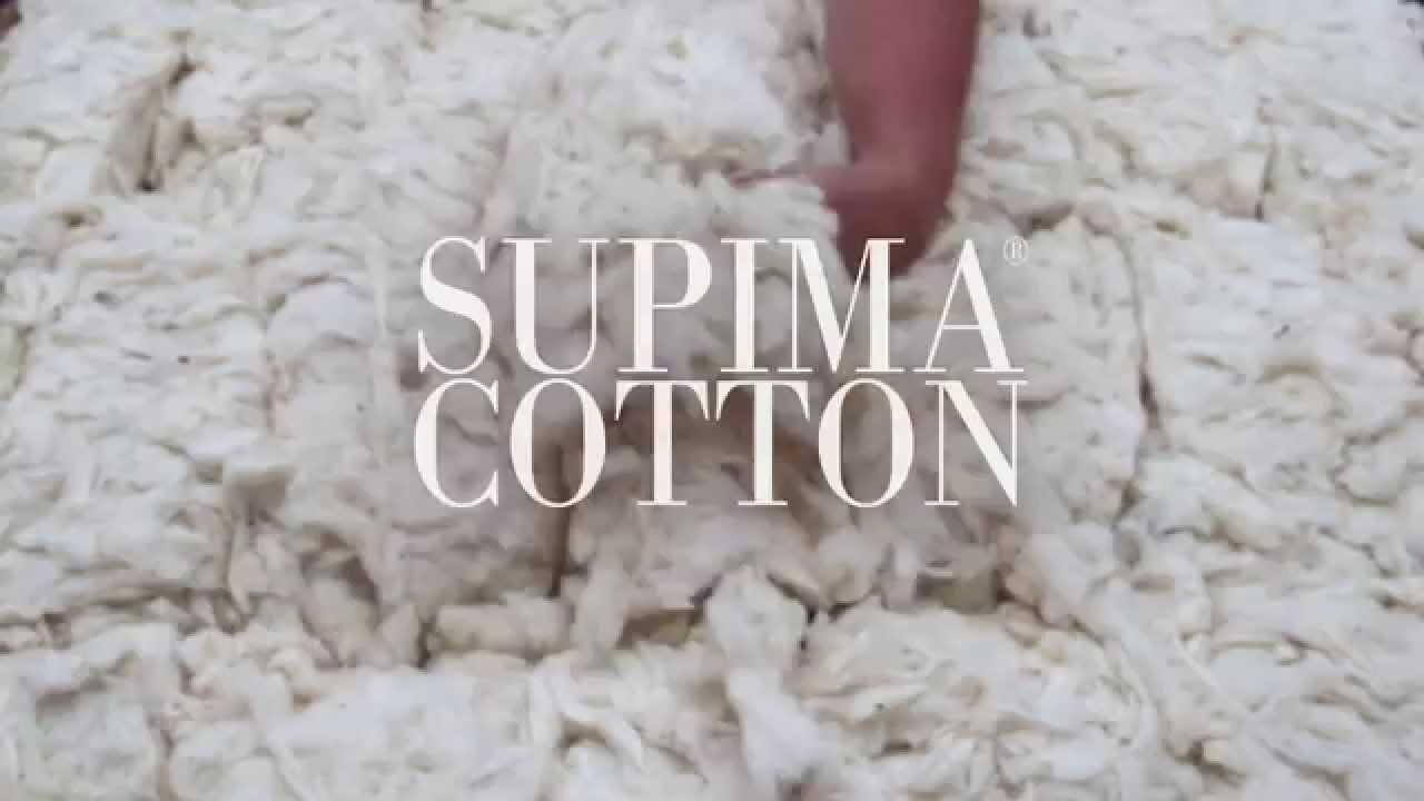 Homegrown in america lands 39 end supima cotton youtube for Lands end logo shirts