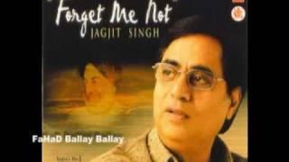 TUM HAMARE NAHI TO KIA GHAM HAI Jagjit Singh Album FORGET ME NOT