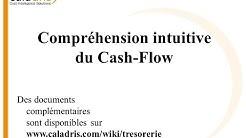 Cash Flow 1 Définition et compréhension intuitive du Cash-Flow