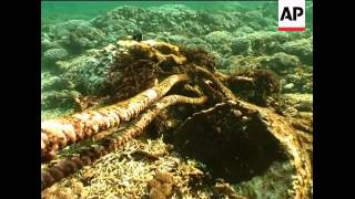 Protecting reefs in the Coral Triangle