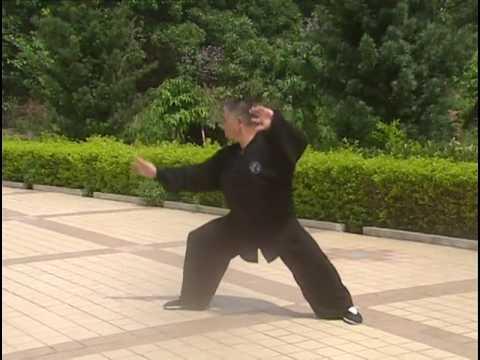 Li Xinhua Taiji Dragon 李新华龙形太极门  Dragon Style Fist (1)