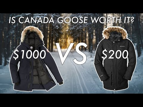 Is A Canada Goose Jacket Worth It? Canada Goose Review