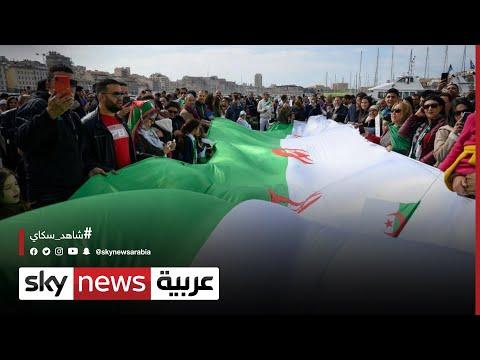 الجزائر.. جدل بشأن مشروع قانون يجرم من يعرقل العملية الانتخابية  - نشر قبل 46 دقيقة