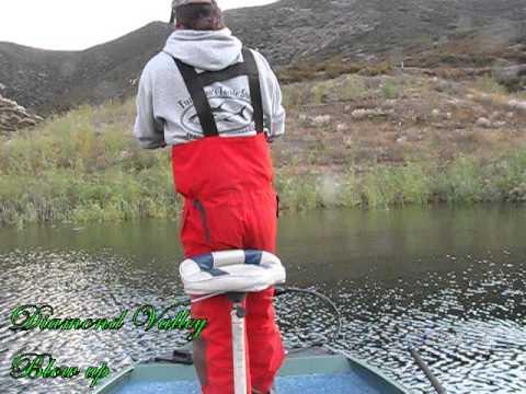Live shad fishing diamond valley lake youtube for Diamond valley fishing report