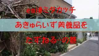 """三鷹市の野崎にある化粧品会社はなんと""""すっぴん""""が売り。社員は全員化..."""