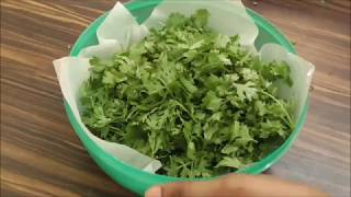 how to keep cilantro leaves fresh for long time /how to store cilantro for long time