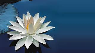 Deva Premal Miten feat. Manose - Gayatri Mantra (KeyBe Edit)
