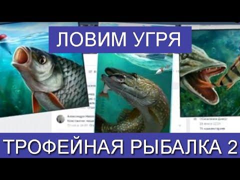 Как поймать угря в трофейной рыбалке