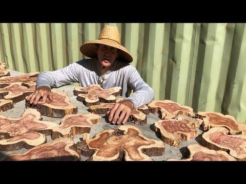 makin' wood slice wall art