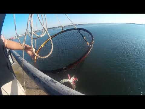 06.28.19 Ocean City, MD  Rt 50 Bridge: Jigging For Flounder