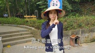 越南/跟秋姮同遊福利真是多 dẫn học trò về thăm Đền Hùng