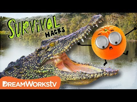 How to Survive an ALLIGATOR Attack | SURVIVAL HACKS