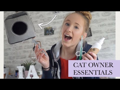 CAT OWNER ESSENTIALS & MUST HAVES - 2018 | Imy'sAnimals