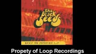 Coming Back Home - The Back Seeds