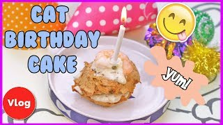 How To Make a Birthday Cake For Your Cat! Cat Birthday Cake Recipe + Invitation To A Birthday Party!