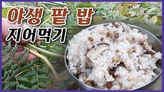 야생 팥따서 표고버섯 밥 해먹기 / 산스님의 요리