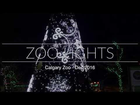 Calgary Zoo Lights 2016
