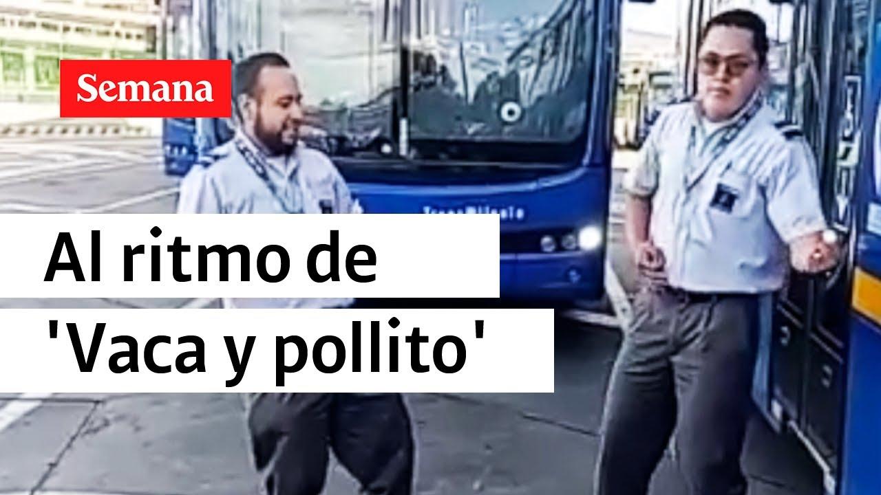 Download Conductores del SITP bailan 'Vaca y Pollito'   Videos Semana