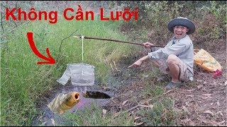 Câu Cá Không Cần Lưỡi Quá Bá Đạo .Bẫy Cá Lóc Quá Đẳng Cấp .Không Xem Phí Đấy .Fish Trapping System